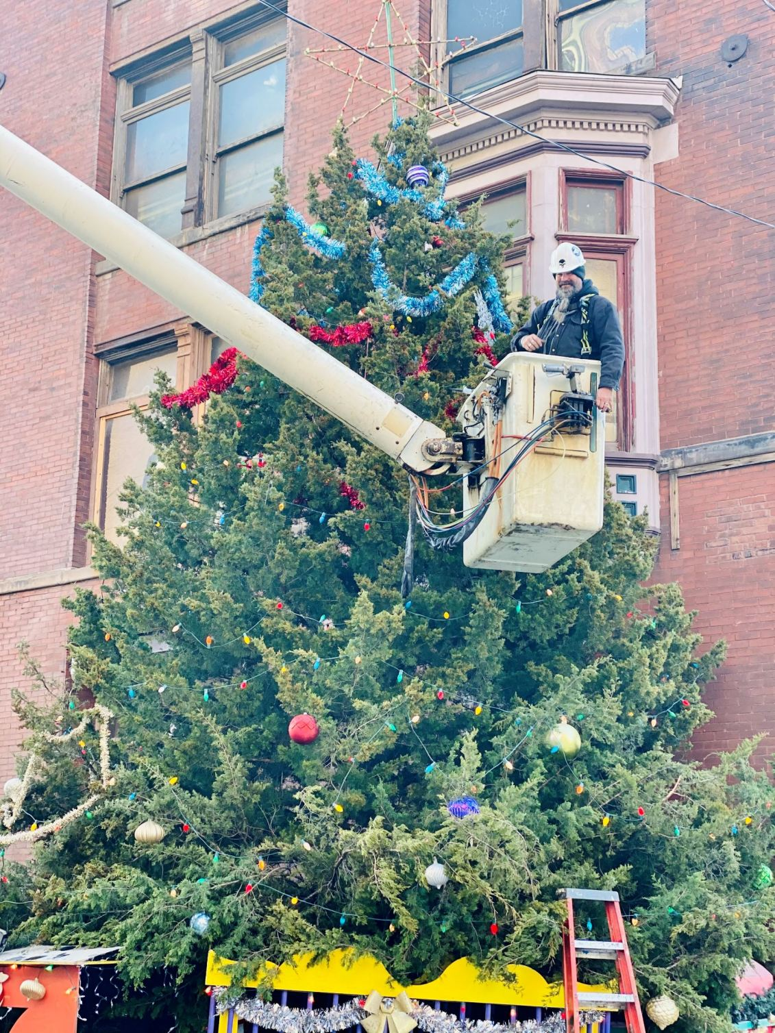 West Bottoms 2020 tree ready for holiday lighting.